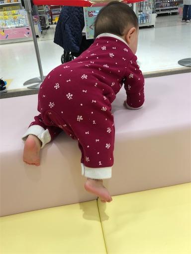 f:id:shihoko123:20200327204742j:image