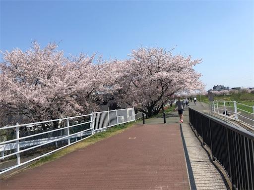 f:id:shihoko123:20200404234403j:image