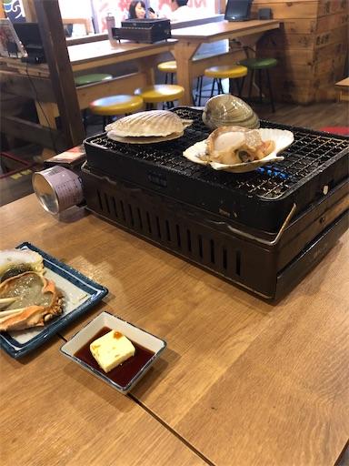 f:id:shihoko123:20200520230902j:image