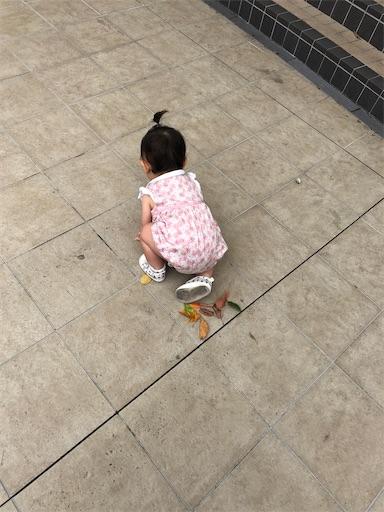 f:id:shihoko123:20200714210256j:image