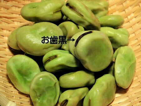f:id:shihomaru:20170510045903j:image