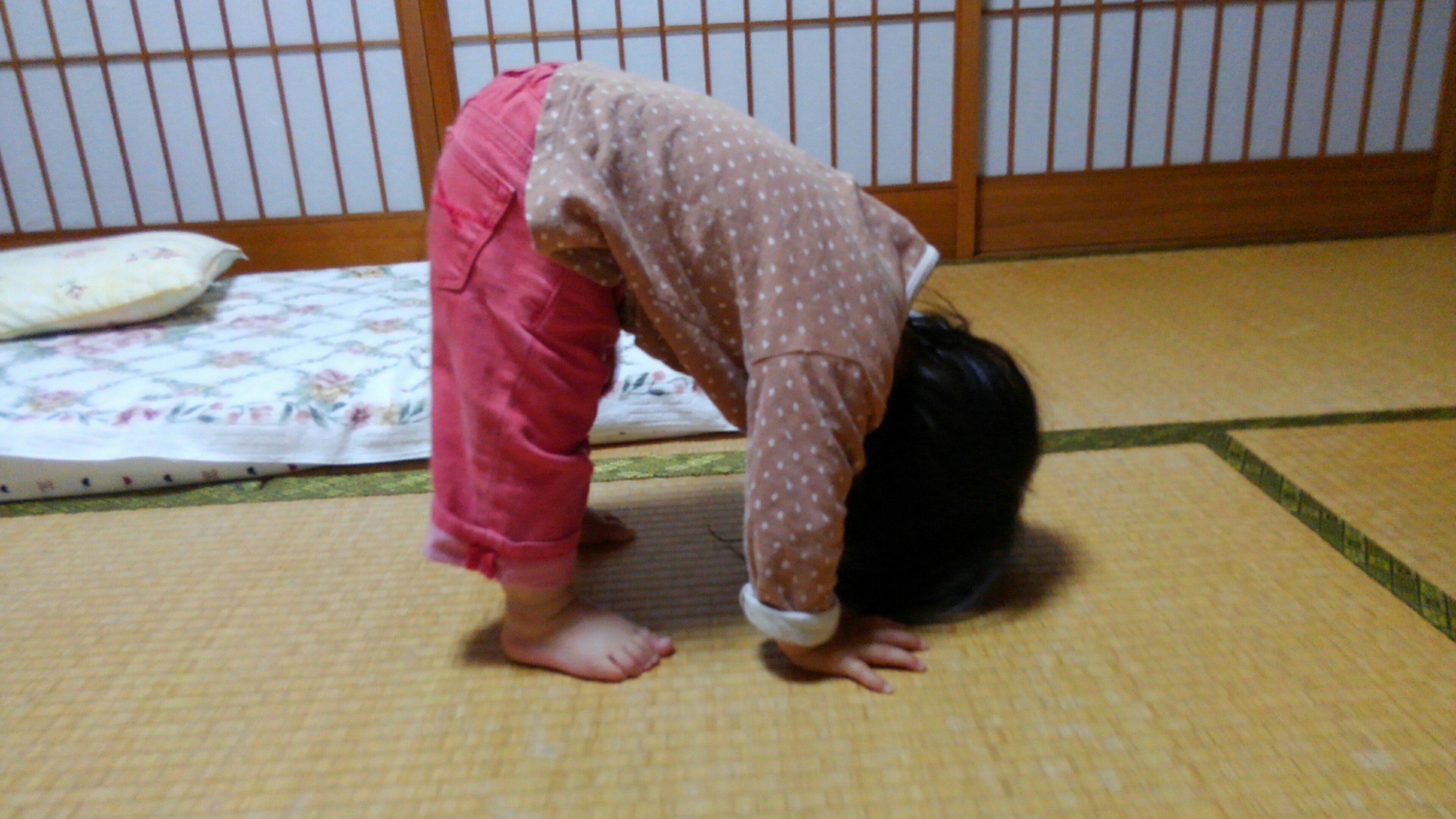f:id:shihomaru:20170612080445j:image