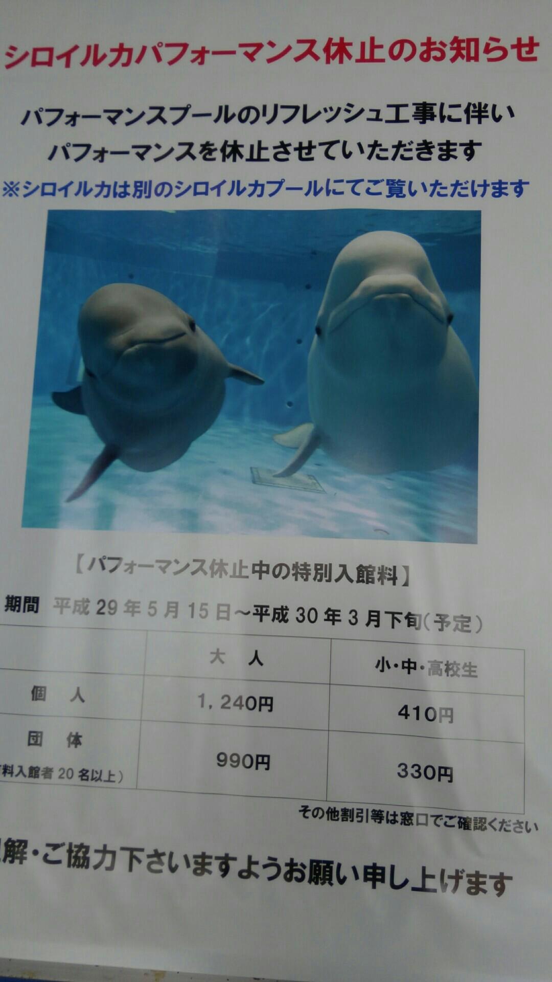 f:id:shihomaru:20170729195030j:image