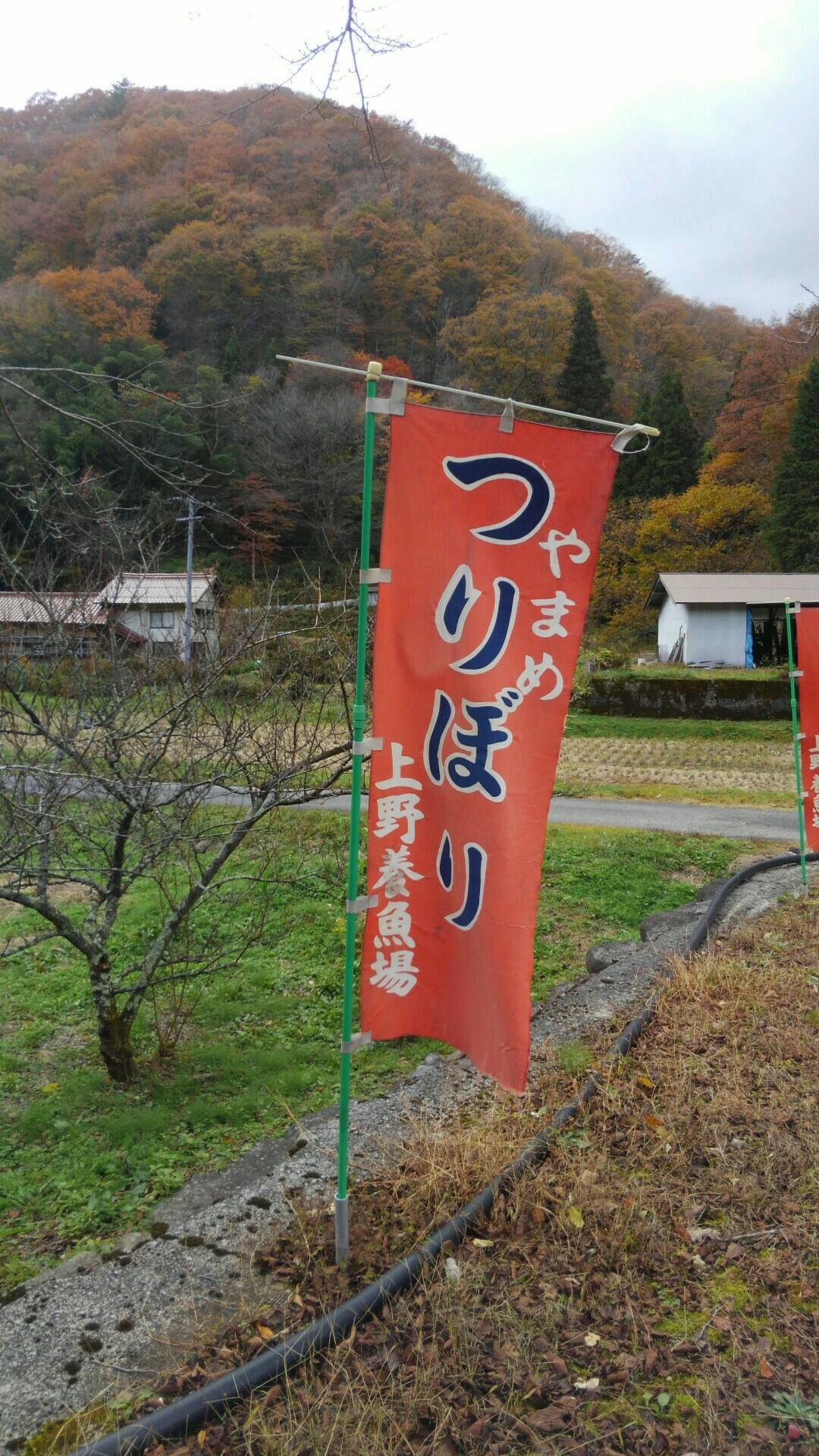 f:id:shihomaru:20171111194254j:image