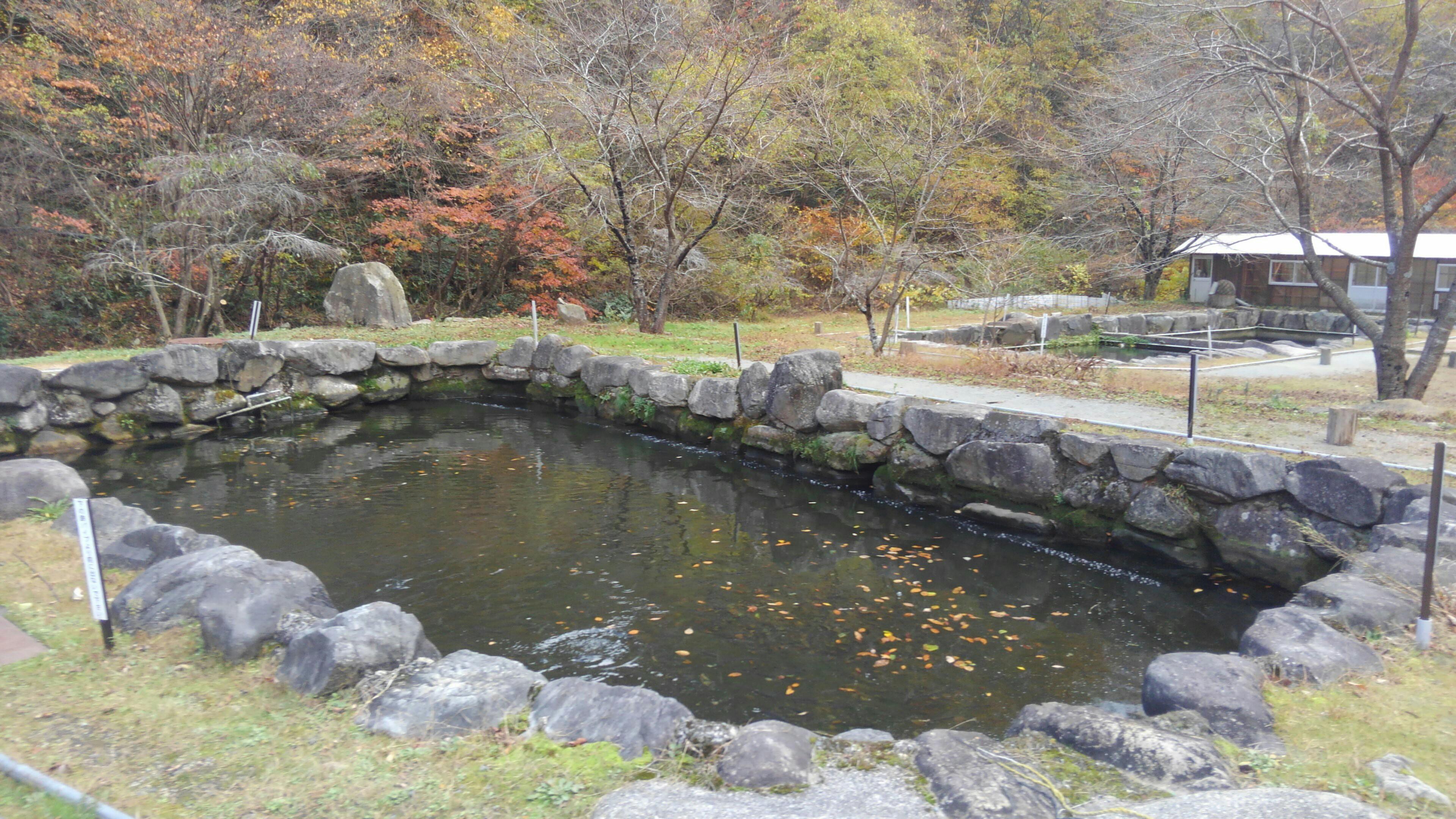 f:id:shihomaru:20171111194606j:image