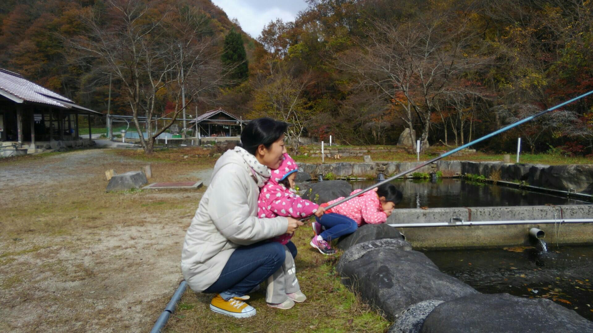 f:id:shihomaru:20171111195536j:image