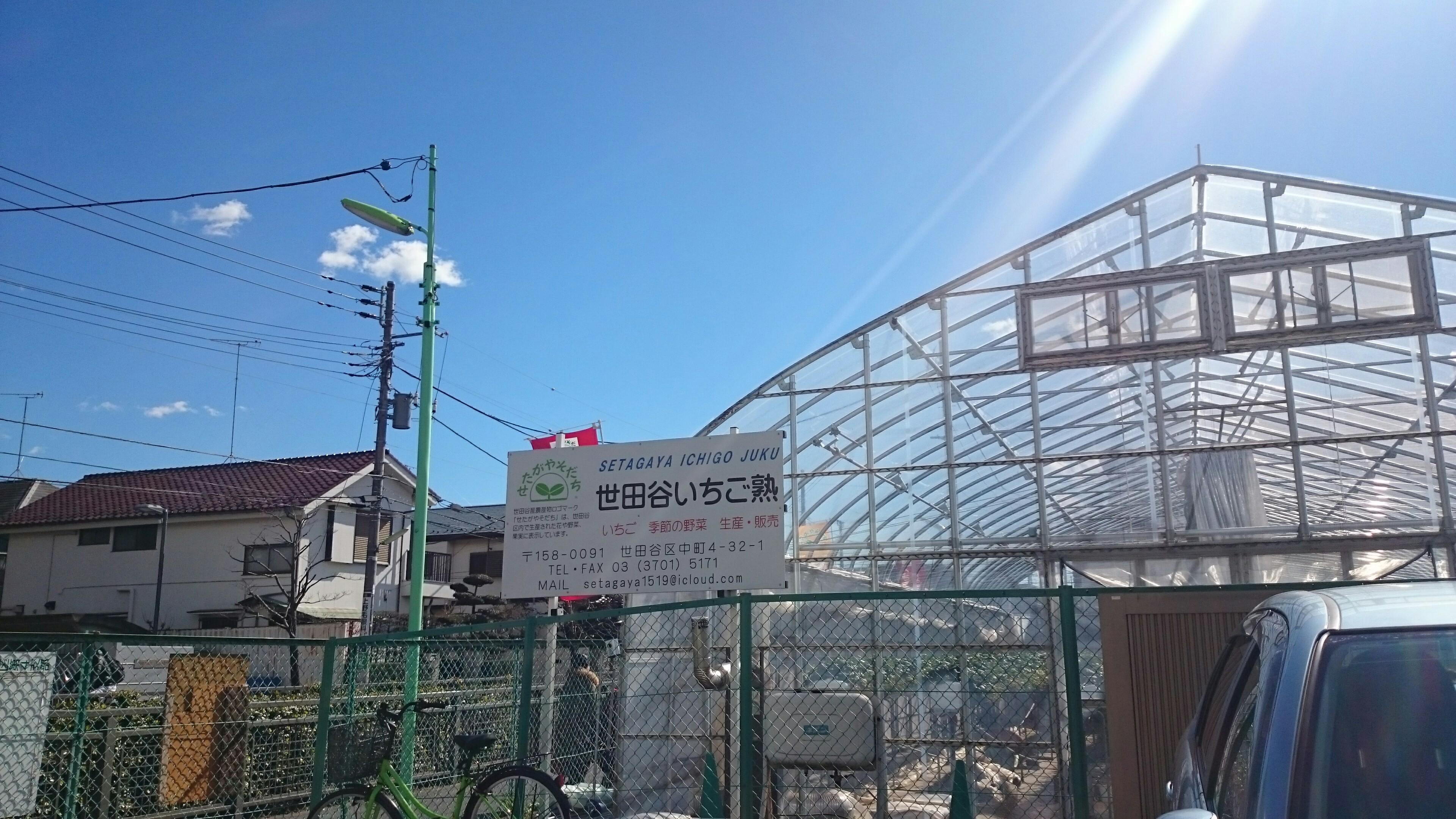 f:id:shiika-0620:20170212144839j:image