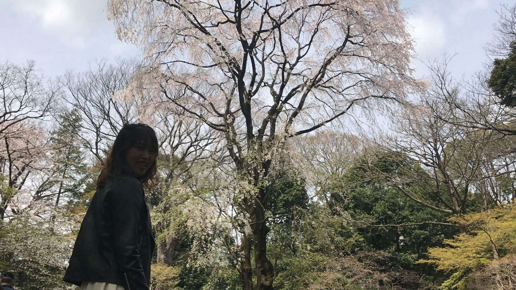 f:id:shiika-0620:20170411155641j:image