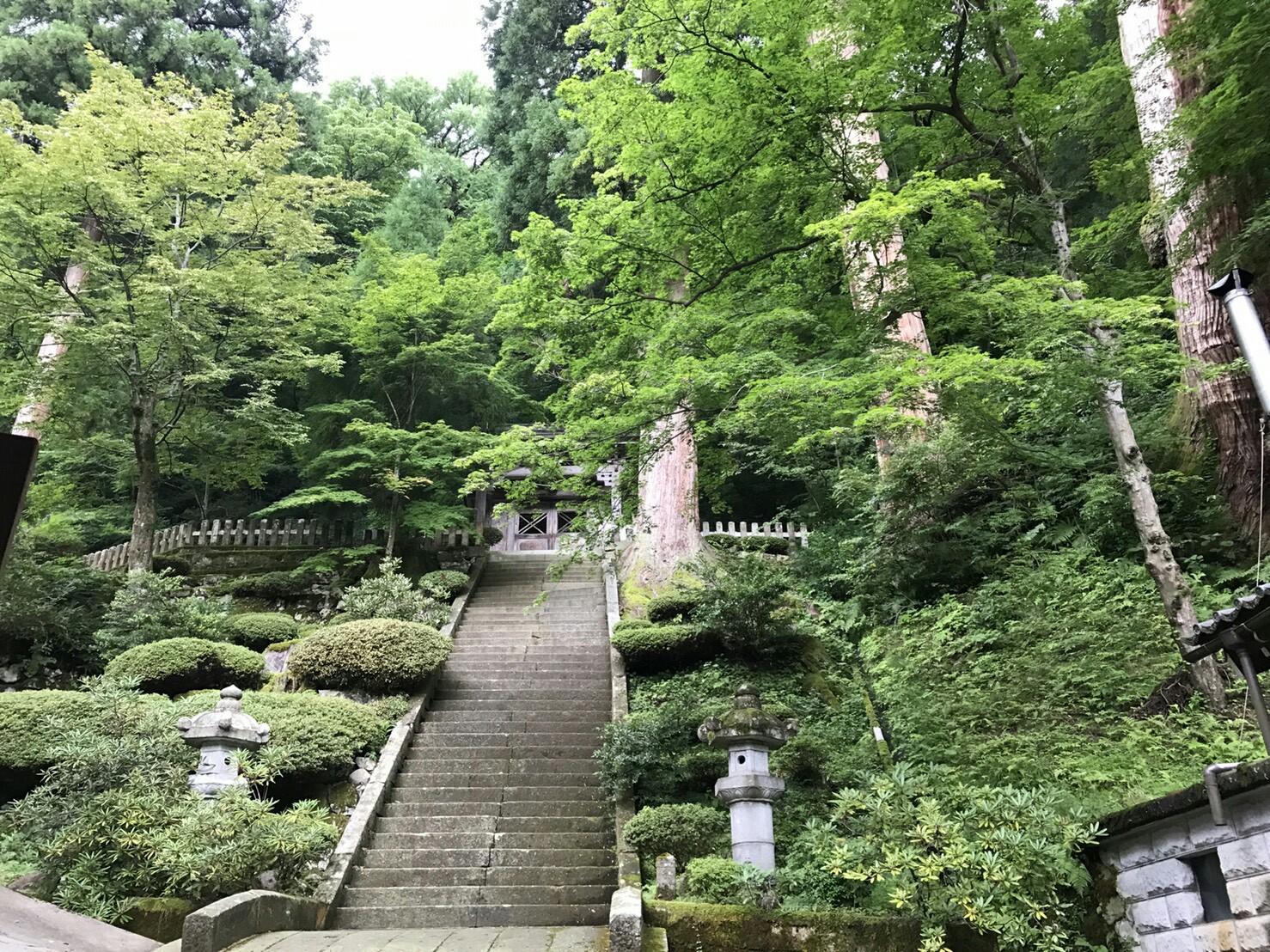 f:id:shiika-0620:20170813105420j:plain