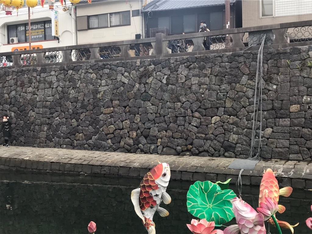 f:id:shiika-0620:20190219131146j:image