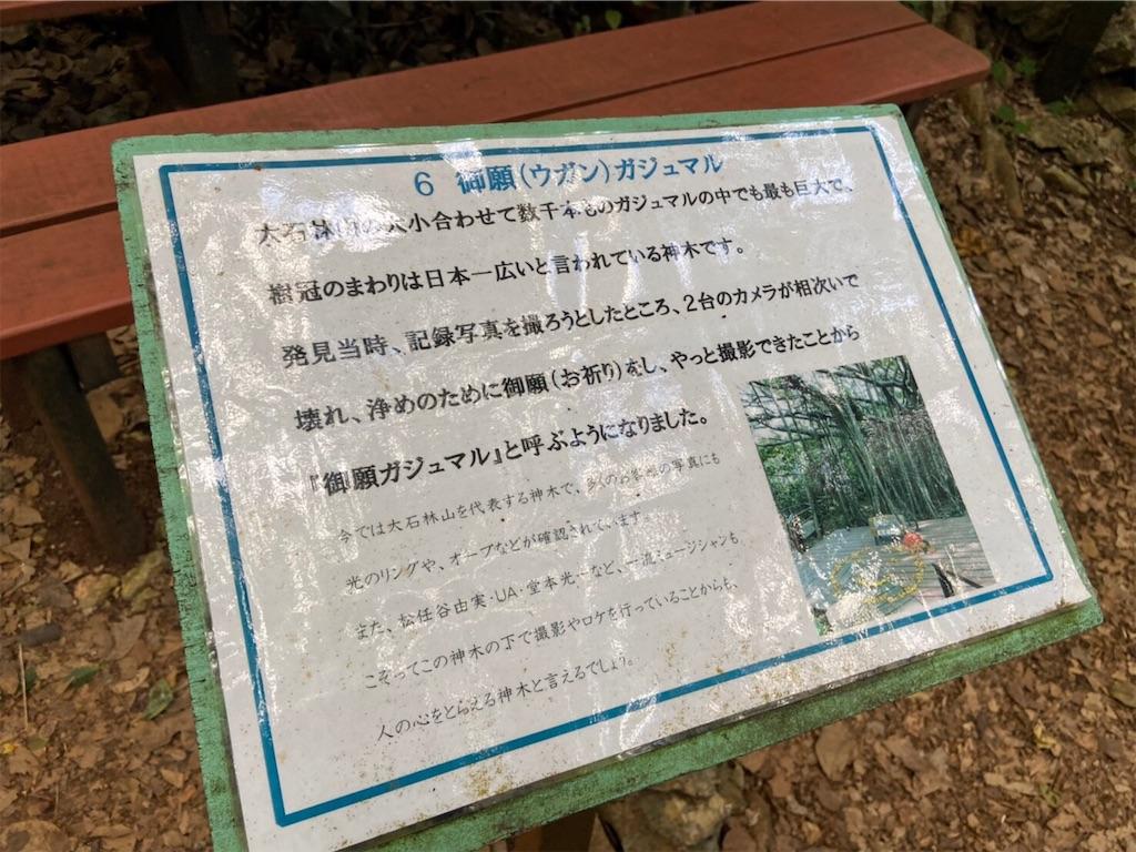 f:id:shiika-0620:20200211184929j:image