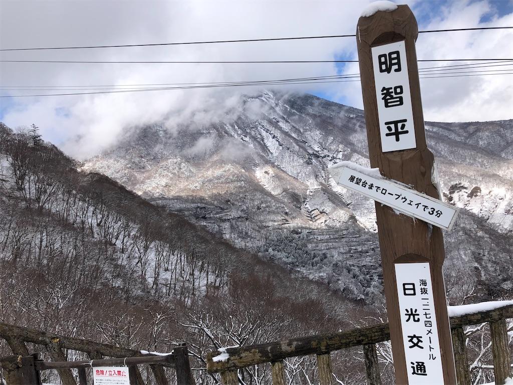 f:id:shiika-0620:20200323200015j:image