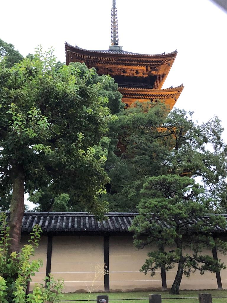 f:id:shiika-0620:20200810132429j:image