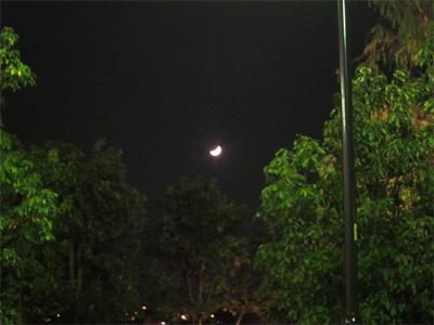 20101111230302
