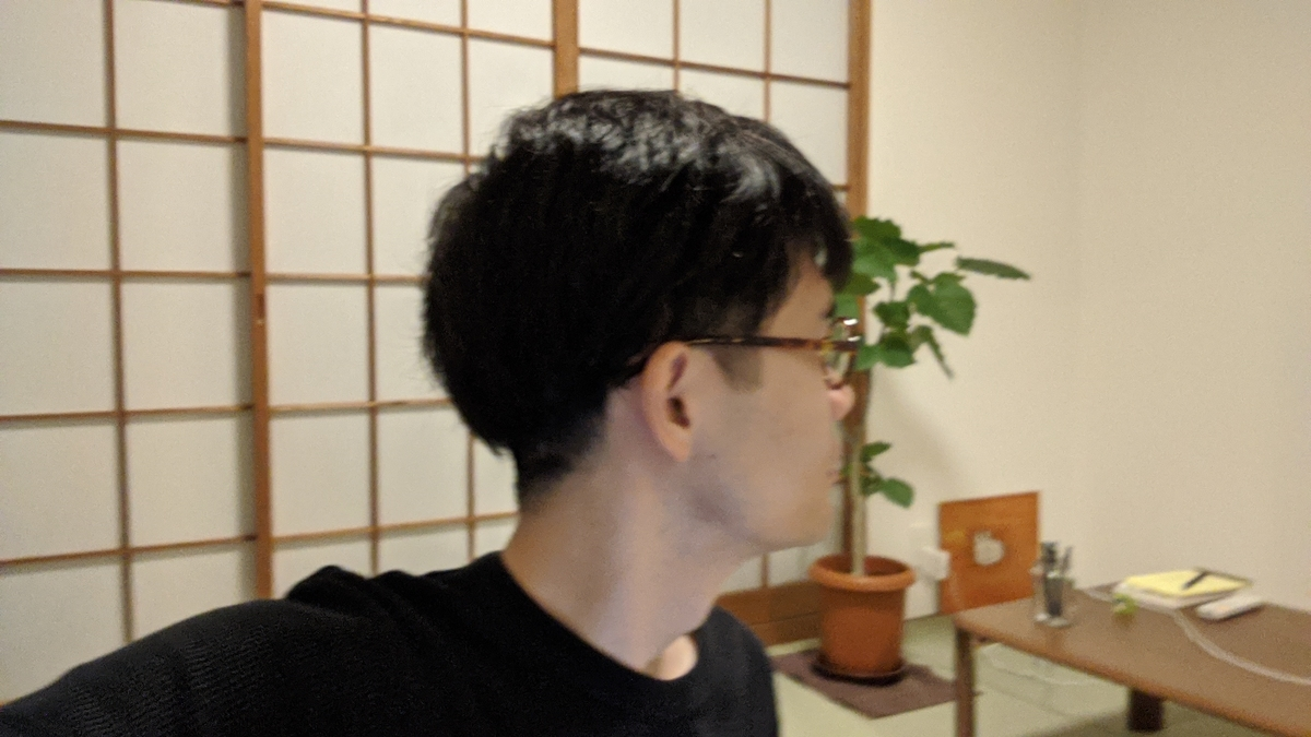 f:id:shiinaneko:20200806190854j:plain