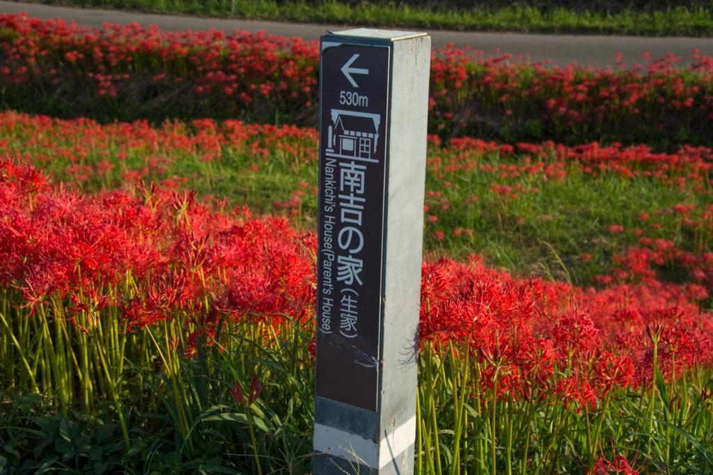 f:id:shiitakeoishi:20170926000807j:plain