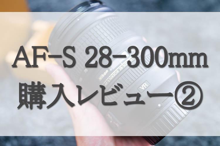 f:id:shiitakeoishi:20171001230510j:plain