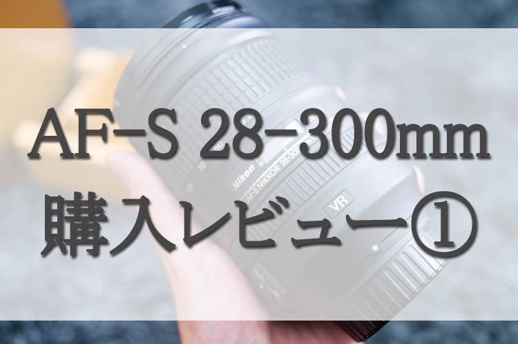 f:id:shiitakeoishi:20171001233555j:plain