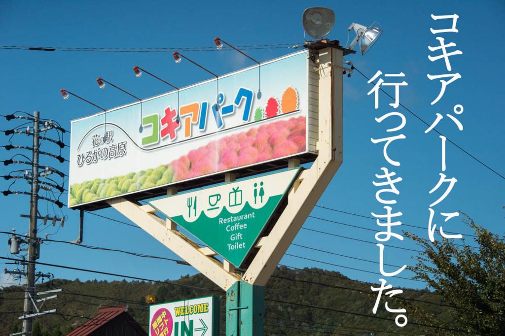 f:id:shiitakeoishi:20171012001455j:plain