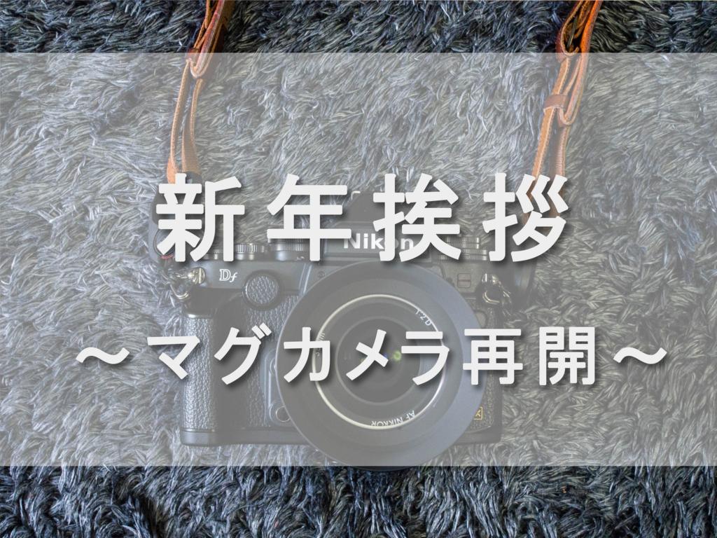 f:id:shiitakeoishi:20180105000452j:plain