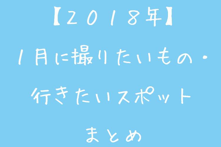 f:id:shiitakeoishi:20180107020333j:plain