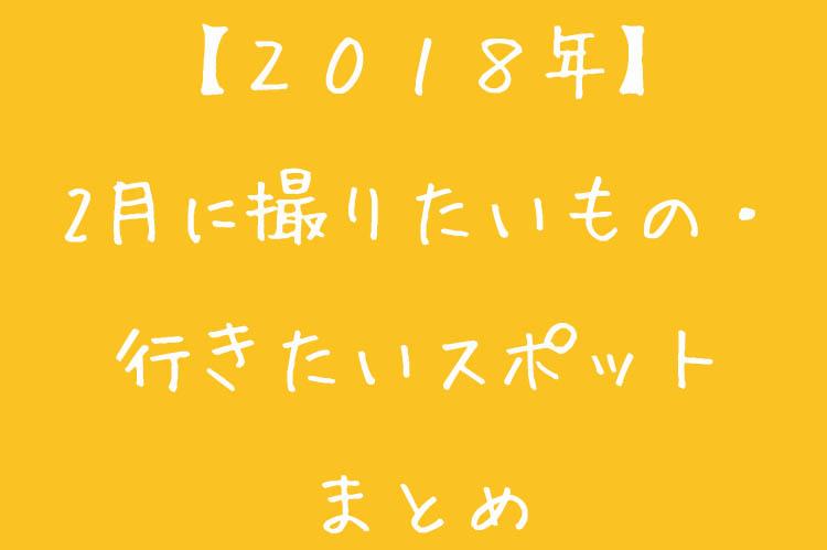 f:id:shiitakeoishi:20180203230204j:plain