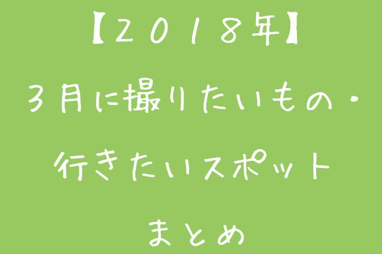 f:id:shiitakeoishi:20180224184357j:plain