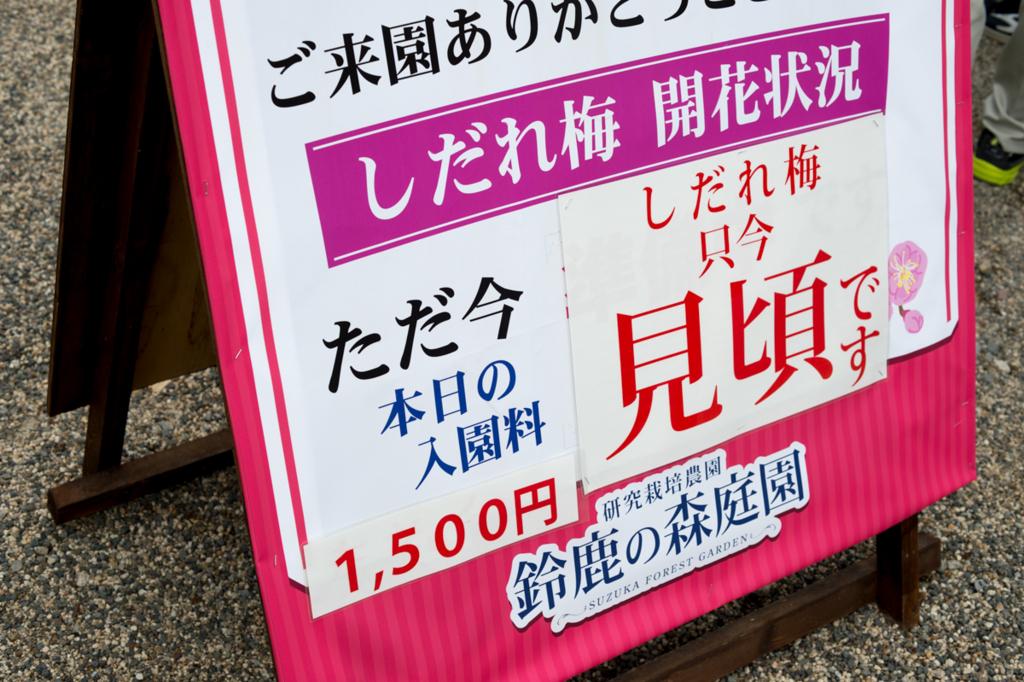 f:id:shiitakeoishi:20180318172651j:plain