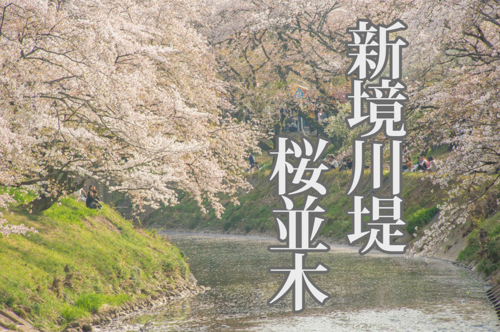 f:id:shiitakeoishi:20180403224832j:plain