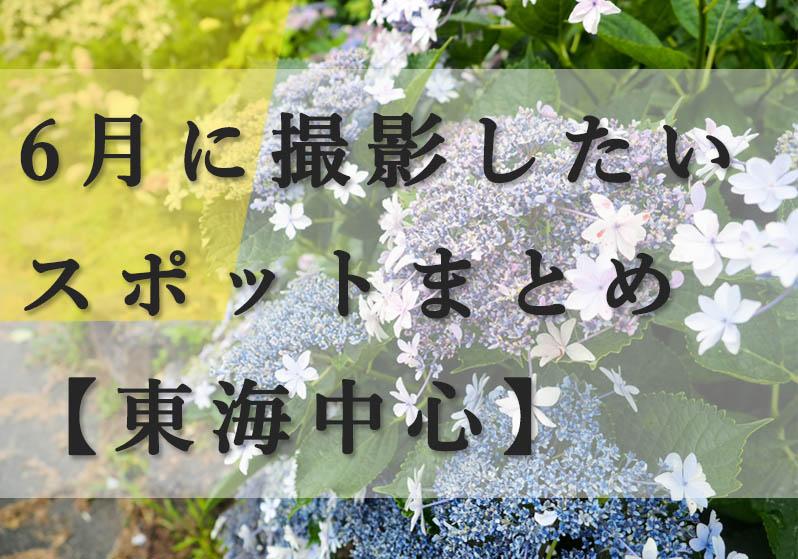 f:id:shiitakeoishi:20180531142833j:plain