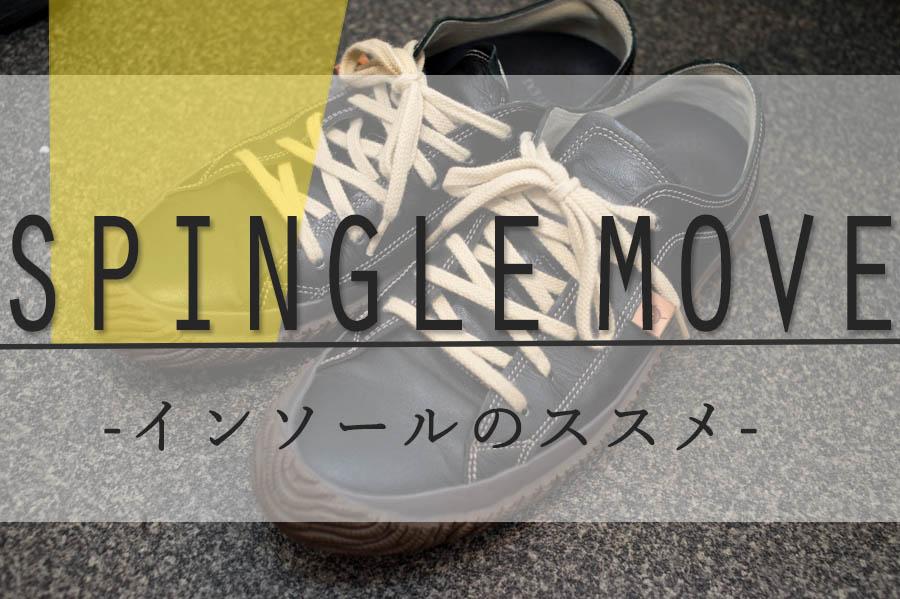 f:id:shiitakeoishi:20180531212607j:plain