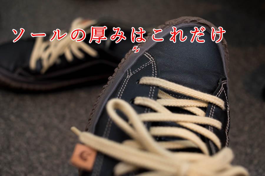 f:id:shiitakeoishi:20180531214424j:plain