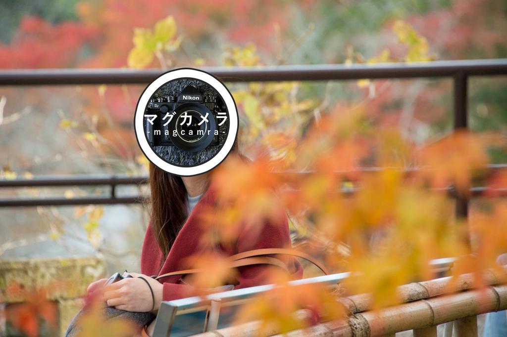 f:id:shiitakeoishi:20181203004854j:plain
