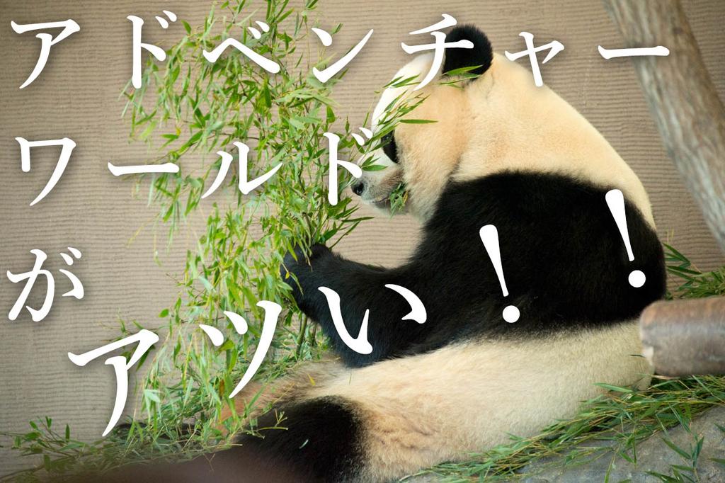 f:id:shiitakeoishi:20181219231509j:plain