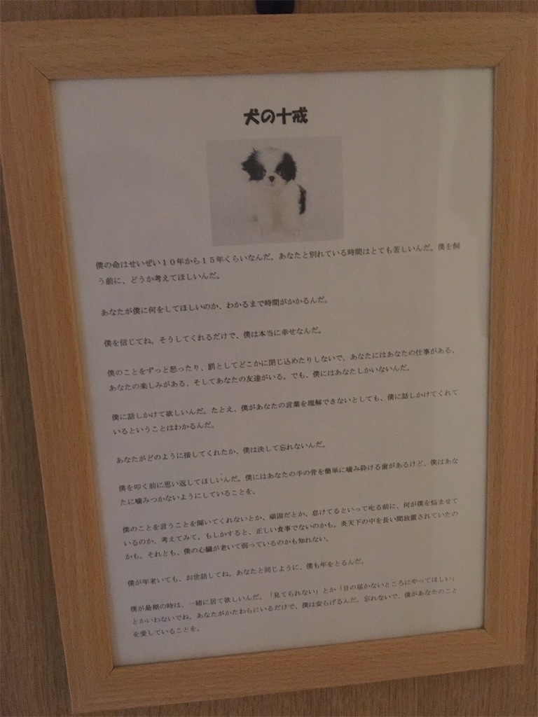 f:id:shijimi0430:20200614222230j:image