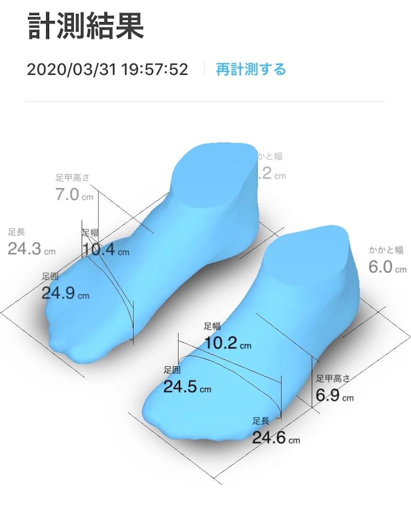 f:id:shikabanewokoeteyuke:20200331213857j:image