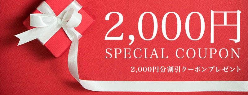 f:id:shikachannel:20200215165358j:plain