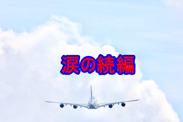 f:id:shikachannel:20200622165451j:plain