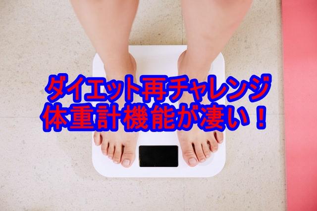 f:id:shikachannel:20200629153015j:plain