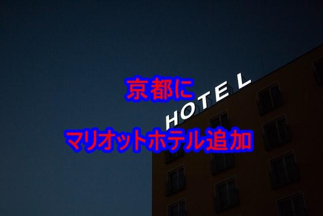 f:id:shikachannel:20200703144010j:plain
