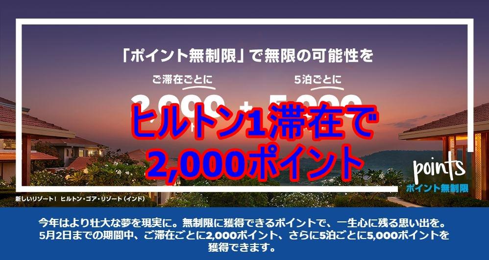 f:id:shikachannel:20210312100037j:plain