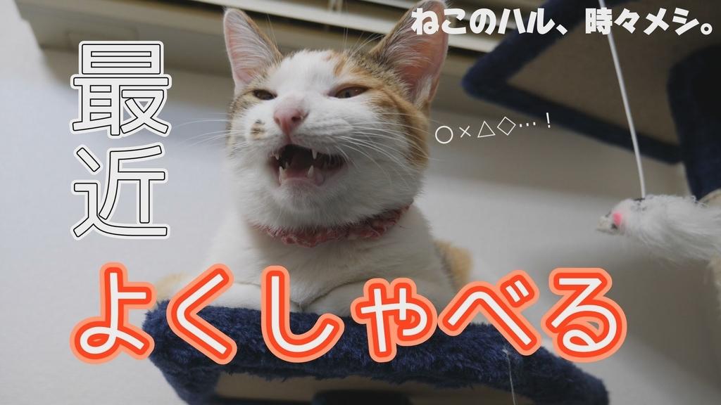 f:id:shikakou:20190106203724j:plain
