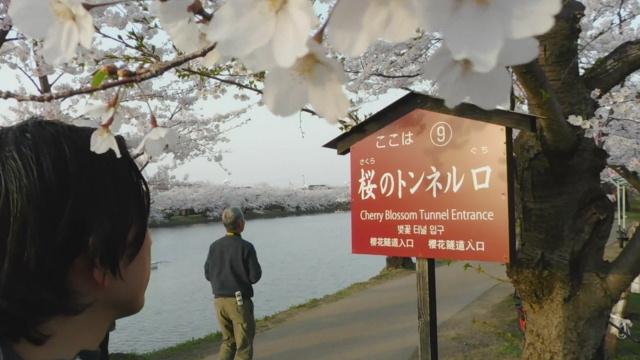 f:id:shikaku-master-ota:20190424195824j:plain
