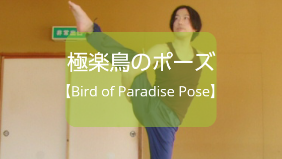 f:id:shikaku-master-ota:20190506192125p:plain