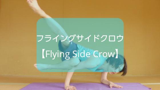 f:id:shikaku-master-ota:20190606183049p:plain