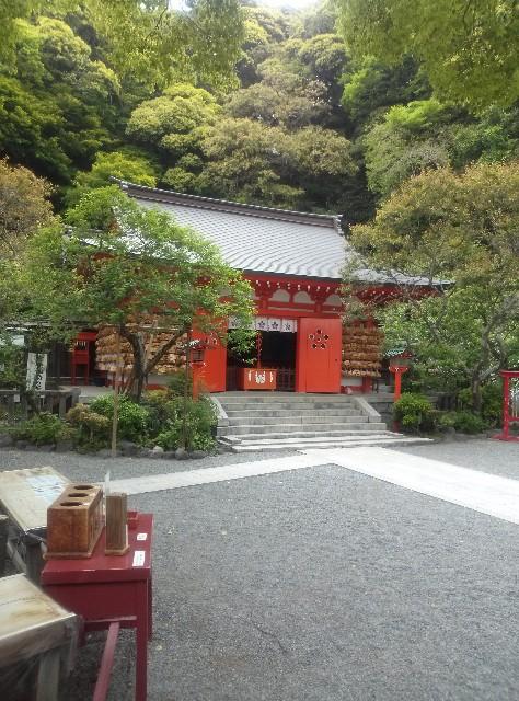 f:id:shikakudodesyo:20180505234605j:image
