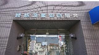 f:id:shikakudodesyo:20190217175313j:image