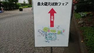 f:id:shikakudodesyo:20190623232528j:image