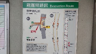 f:id:shikakudodesyo:20190813105738j:image