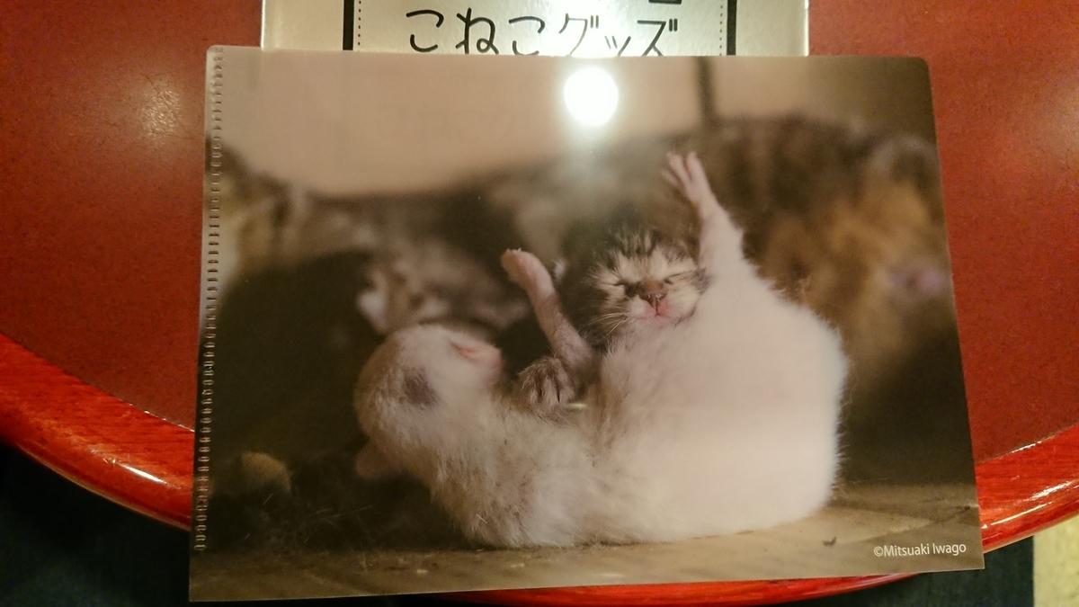 f:id:shikakudodesyo:20200226110449j:plain
